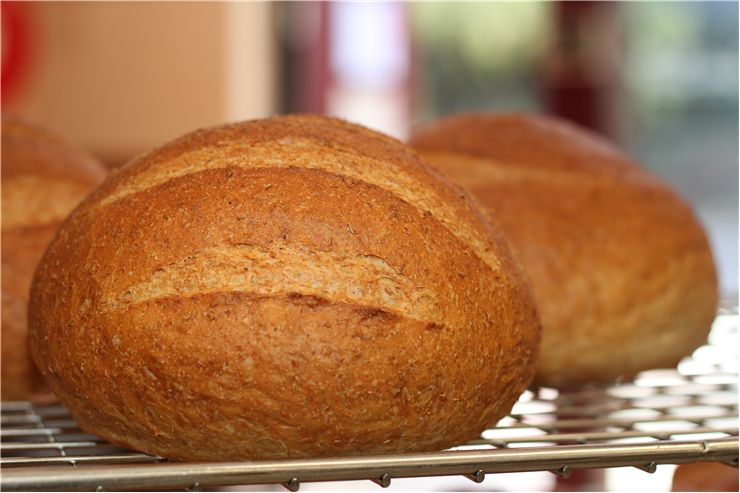 Picture - Fresh Baked Round Bread